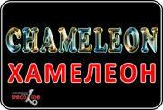 хамелеон-новый